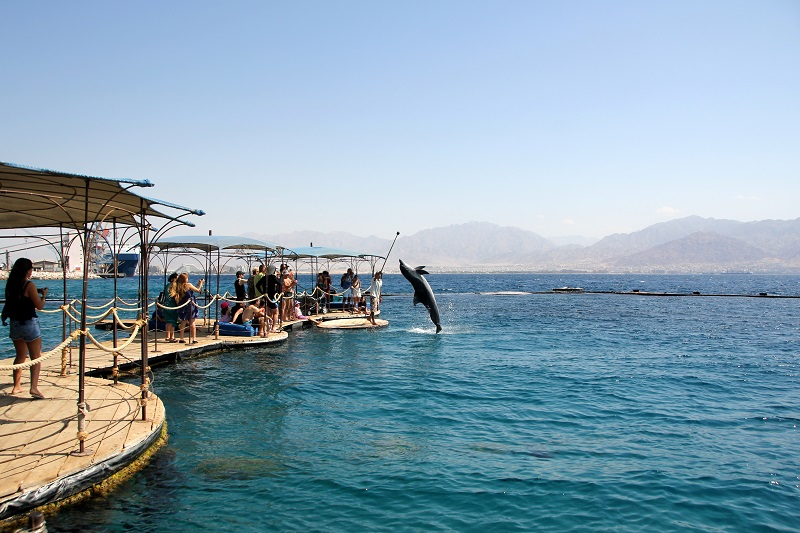 eilat car rental - reef