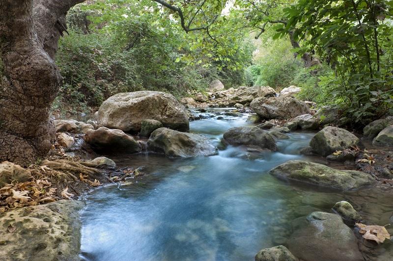 Israel's Top 3 Water Hikes